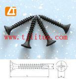 Parafuso da Boa Qualidade, Drywall Parafusa (M3.5- M4.8)
