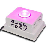 Binnen Weed Growth COB 150W LED Grow Light Full Spectrum voor Replacing 500W HPS/Mh