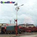 Éclairage solaire chaud de la vente DEL de la Chine dans le réverbère solaire