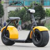 Vespa fresca eléctrica barata Citycoco de Harley Davidsion de la vespa de Citycoco de la motocicleta del precio 2000W