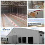 Taller de acero ligero modificado para requisitos particulares con buena calidad y precio bajo