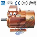 Motor de C.A. da eficiência elevada de ferro de molde Ie2 do IEC 6pole