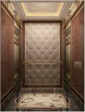 Подъем лифта дома подъема лифта пассажира