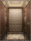 Elevador do elevador da HOME do elevador do elevador do passageiro