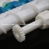 Acetal van de Fabrikant van de Schroef van China de Plastic Schroef van Delrin