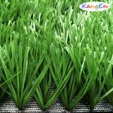 Het synthetische Gras/het Kunstmatige Gras komt voor het Hof van de Voetbal samen (jds-50)