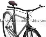 """28 """" 인치에 의하여 끌고간 프레임 포도 수확은 네덜란드 자전거 특별한 네덜란드 Oma 자전거 /Classic 네덜란드 사람 자전거를 자전거를 탄다"""