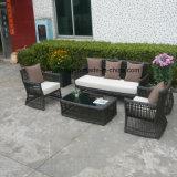 Софа мебели сада дешево синтетического большого круглого ротанга верхнего качества напольная установила софой 3-Seat & одиночной софой (YT603)