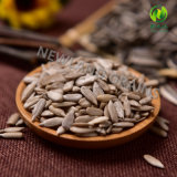 Chinois la plupart des grains populaires des graines de tournesol à vendre et l'exportation
