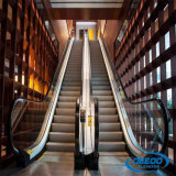 Escalator résidentiel de passager d'intérieur extérieur moderne commercial d'opération