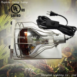 "60W 150W 200W 6.5 "" Terrarium Reptile Clamp Lamp met Wire Guard"