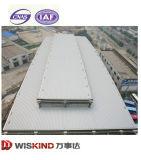 La más nueva estructura diseñada del marco de acero