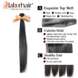 100% 인간 Hair Extension Natural 인도 Virgin Hair Weave, Business Reach Double Profit (LBH001)를 위한 작은 Known Secret Weapons