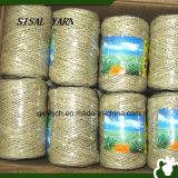 100% 자연 섬유에게서 하는 Eco-Friendly 사이살 삼 털실