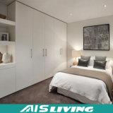 Умоляющий высокомарочные шкафы шкафа шкафа спальни MDF (AIS-W153)