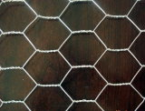 Galvanized Caliente-Dipped Hexagonal Wire Netting Chicken Mesh para Construction con el SGS