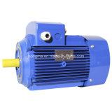 Motore elettrico asincrono a tre fasi di alta efficienza di induzione del NEMA