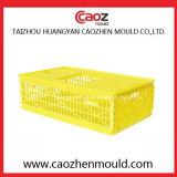 Goede Kwaliteit/de Plastic Vorm van het Krat van het Gevogelte voor het Gebruik van de Kip