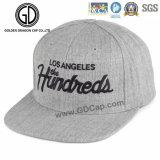 Chapeau frais de Snapback de base-ball de qualité de type neuf d'ère avec la broderie 3D