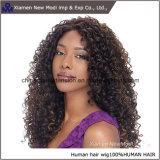 中国の人間の毛髪のかつらの巻き毛の人間の毛髪の前部レースのかつら