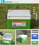 Miniwein-Kühlvorrichtung-Kasten für Picknick