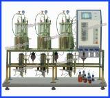 Serbatoio di putrefazione mescolato magnetico di vetro di birra del laboratorio