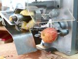 Trancheuse électrique commerciale chinoise d'Apple Peeler Corer