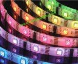 5050SMD 12V/24V Streifen des Streifen-Licht-LED
