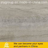 Inkject Printing Rustic Porcelain Tile for Floor and Wall Ginkgo 600X600mm (Ginkgo Gris)