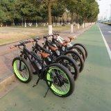 48V 1000Wの電気マウンテンバイクの脂肪質のタイヤの電気自転車