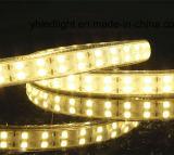 Het hoge LEIDENE van het Lumen Licht van de Strook met Etl- Certificaat keurde 5050 goed