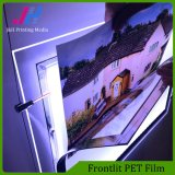 A película do animal de estimação de Frontlit para o metro assina a caixa leve