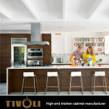 予算の台所製造業者Tivo-0087hからの方法デザインの基本的な積層の食器棚