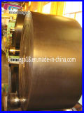Nastro trasportatore di gomma Ep600/4 nell'Iran