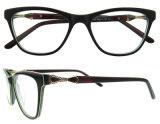 Nuovi blocchi per grafici del monocolo dell'acetato di arrivo per la signora Fashion Eye Glasses