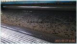 Усилено/выстилки Using стекло волокна Geogrid для кровати дороги