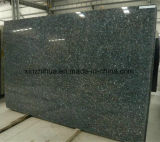 Granito natural de la perla de China para el azulejo / la losa / la encimera