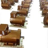 Gerador Synchronous trifásico da corrente alternada da série do Stc de Stc-15kw