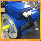 Msej 1HP/CV 0.75kw 2800rpm B34 발과 플랜지 AC 모터