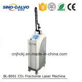Matériel fractionnaire de vétérinaire de laser de CO2 des prix de fabrication pour le blanchiment de face