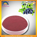 Blueberry Extract Powder in Bulk