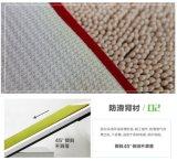 Nuova stuoia di portello del poliestere di Microfiber di disegno