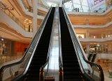Fujizy Rolltreppe-Gebrauch Innen und Einkaufszentrum