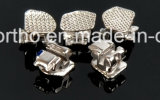 Producto de ortodoncia, SL Soporte populares, Dental auto ligadura soporte