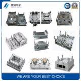 Fuente de alta calidad de varios tipos de proceso plástico del moldeo por inyección del molde del molde plástico