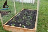 Sailin sechseckiger Maschendraht für Garten-Pflanzen