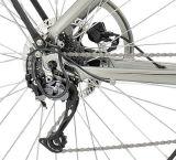 Stadt-vorbildliches elektrisches Fahrrad mit Mittler-Fahren Motor (TDB12Z)