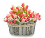 Piantatrice di legno del fiore per la decorazione del giardino e della casa