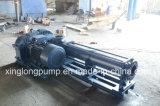 Xinglong Kammer-weiterkommende einzelne Schrauben-Pumpen für alle Flüssigkeiten
