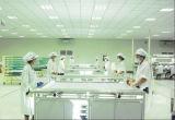 Mono comitato solare cristallino 300W del modulo